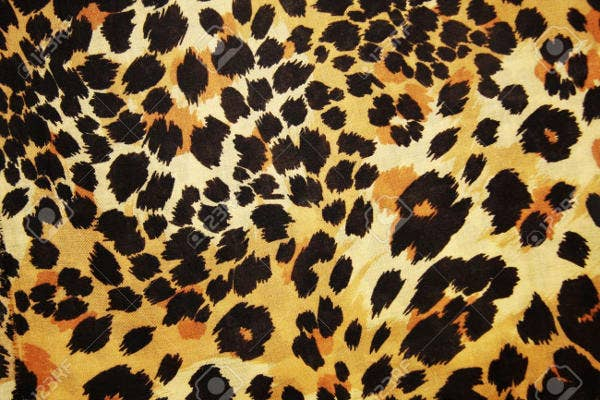 animal skin patterns - photo #36