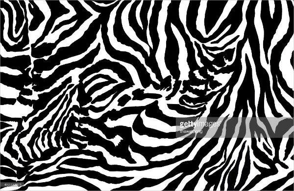 Horizontal Striped Zebra Pattern