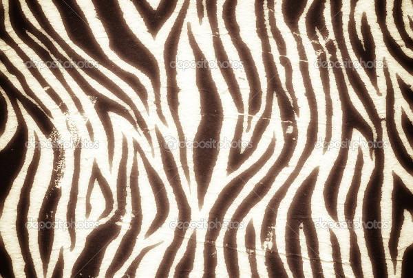 vintage zebra pattern