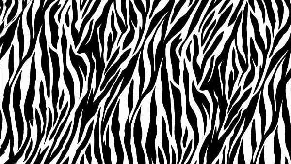 zebrapatterns