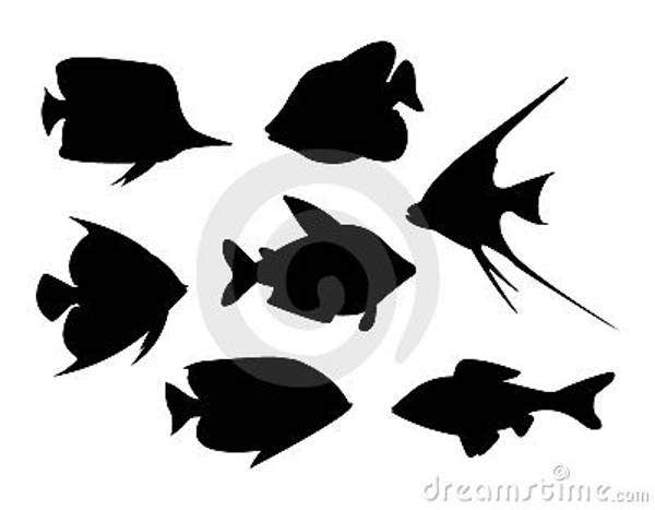 tropical-fish-vector