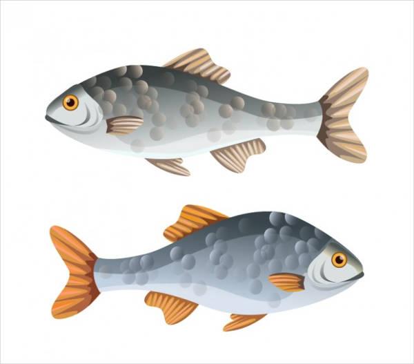 free-fish-vector