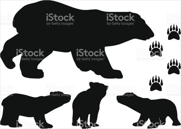 Bear Cub Illustration