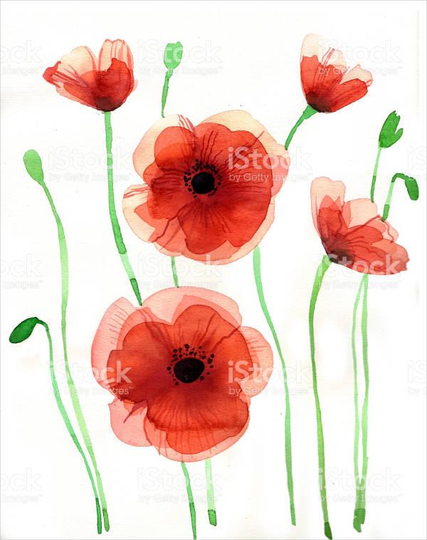 9 flower illustrations free premium templates poppy flower illustration mightylinksfo