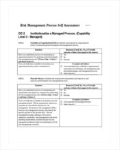risk-management-self-assessment-template