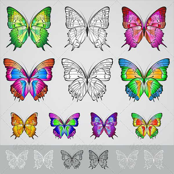 Colorful Butterfly Illustration