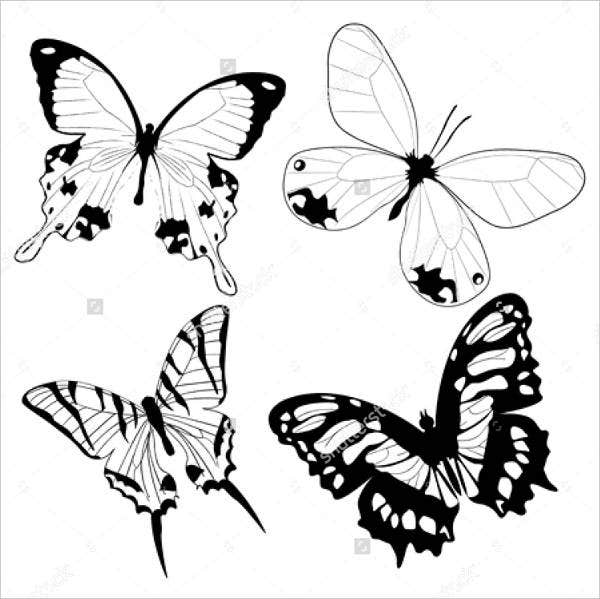 Black and White Butterfly Illustration