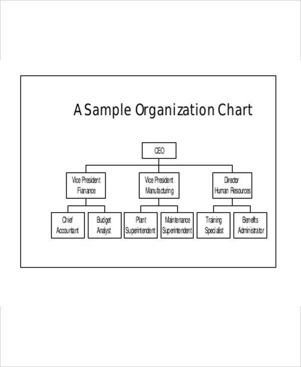 business organization flow chart template1