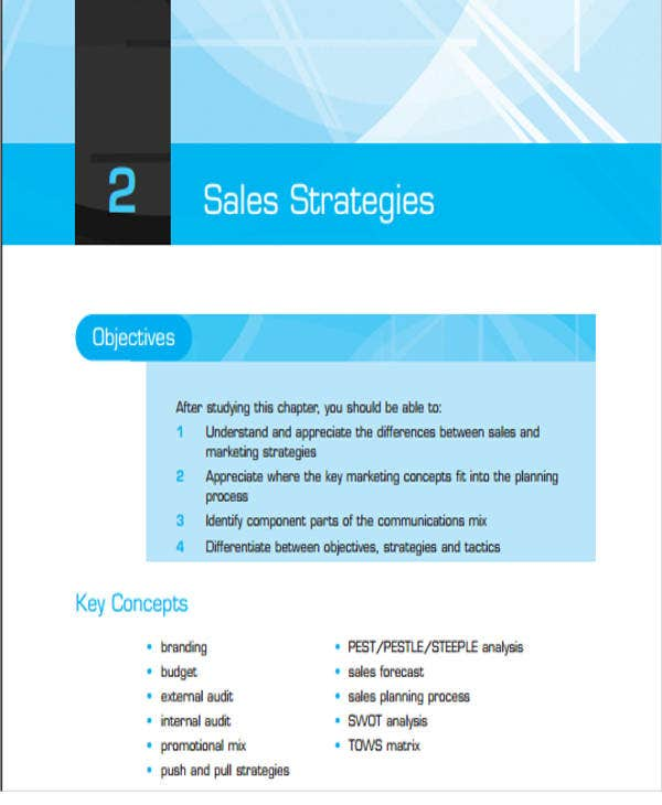 IT Sales Plan Templates Free Word PDF Format Download - Sales manager business plan template