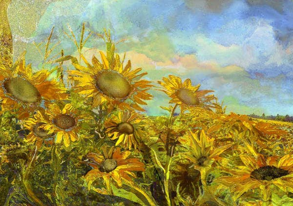 sunflower filed painting