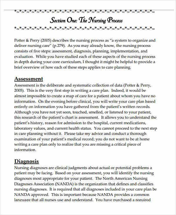 5+ Basic Care Plan Templates -5+ Free Word, Pdf Format Download
