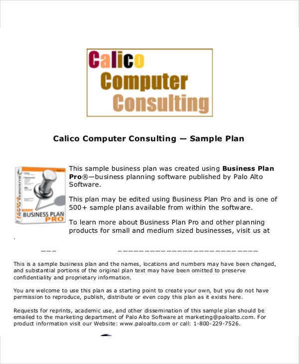 computer consulting business plan template