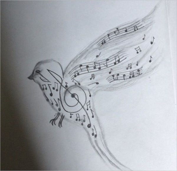 Music Bird Drawing