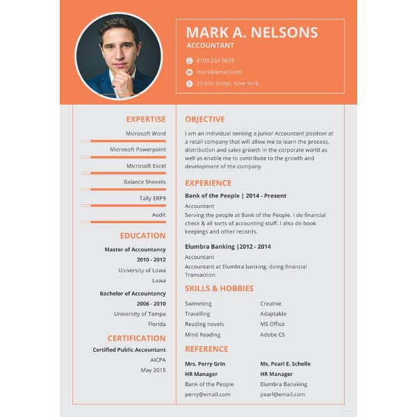 experienced accountant resume template1