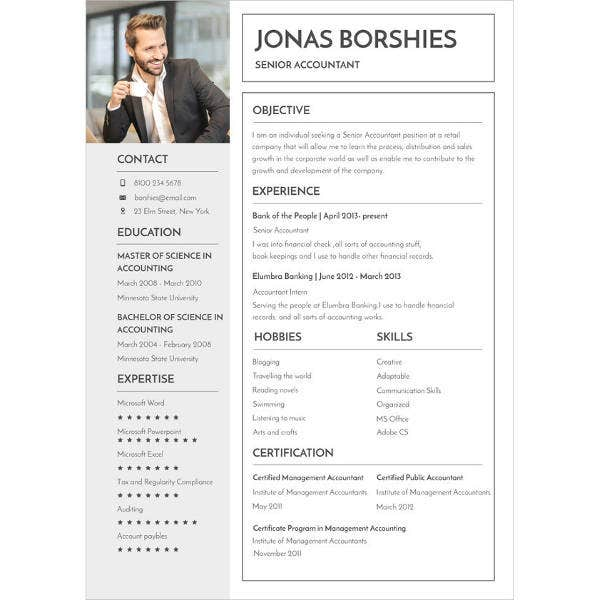 senior accountant experience resume template1