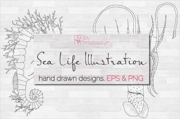 sea-life-illustration