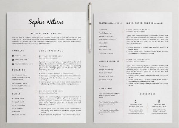modern professional resume example