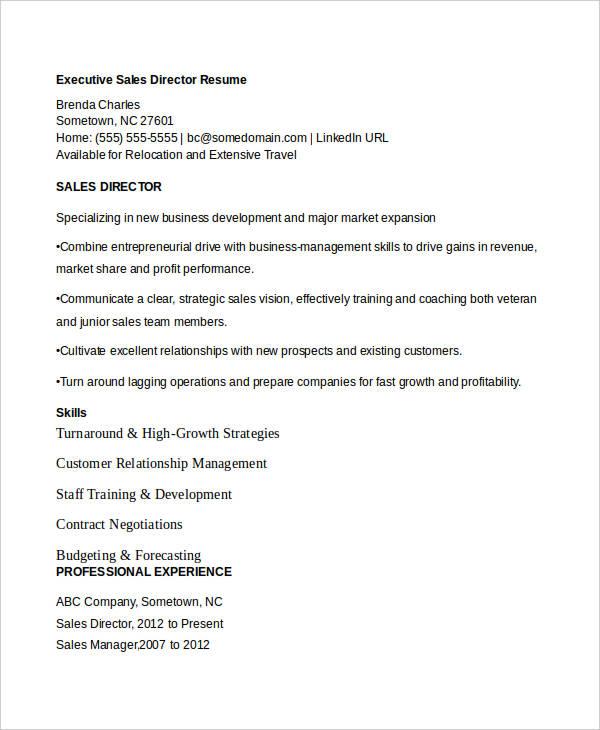 executive sales director resume2