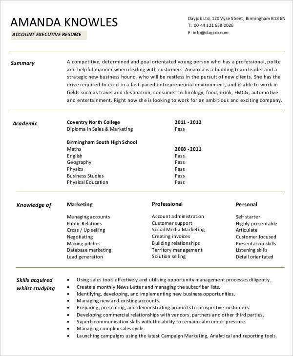 Dental Receipts Word  Free Accountant Resume  Free  Premium Templates Create A Receipt Online with Airline Ticket Receipt Pdf Accountant Executive Sample Ms Word Invoice Template Pdf