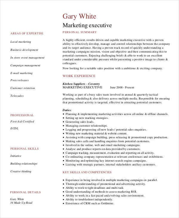 Business Development Executive Resume Best Executive Resume