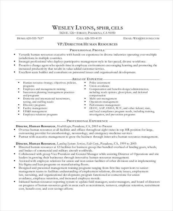 20  best executive resume templates
