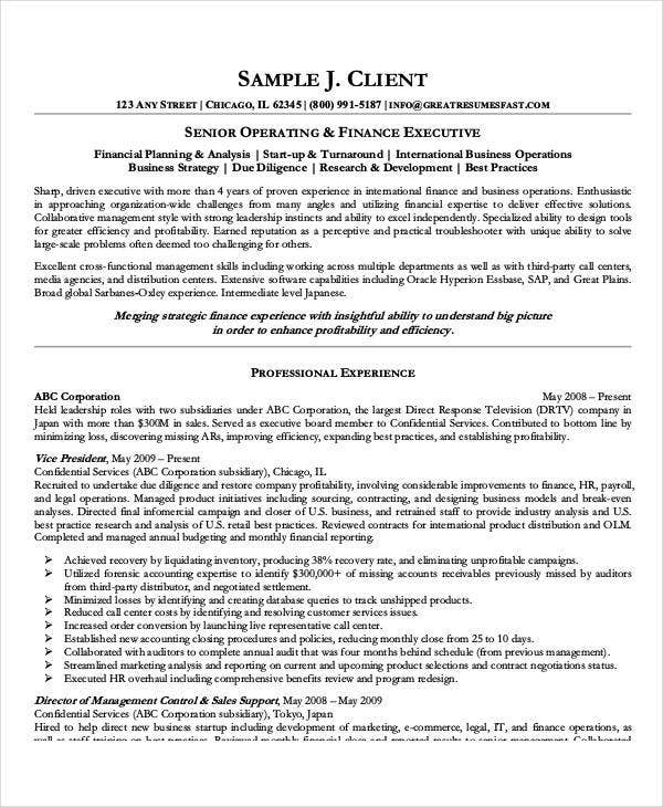 Best Executive Resume Templates   Free Word Pdf Documents