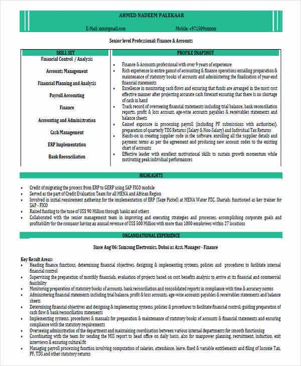 chartered accountant resume format2