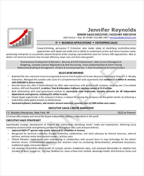 Executive Resume Examples  Free Word Pdf Documents Download