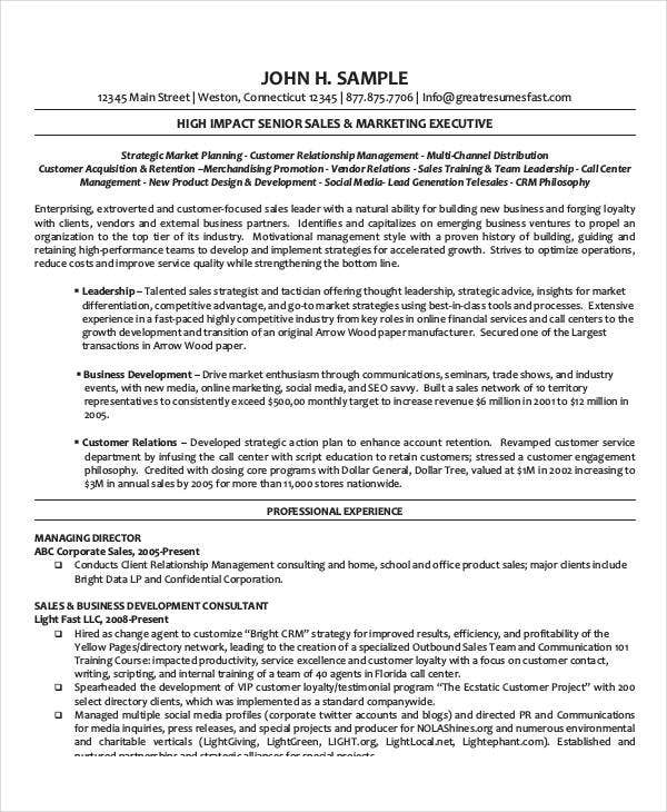 20 best executive resume templates pdf doc free premium
