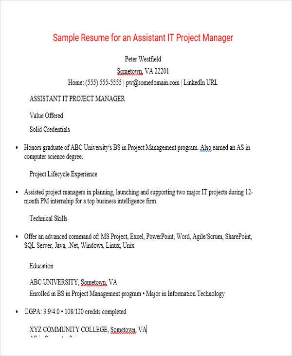assistant project manager - Sample Resume For Manager