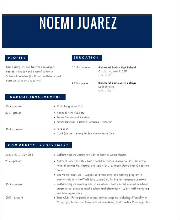 free modern resume template1