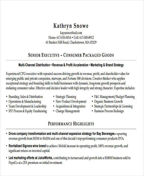 senior business executive resume