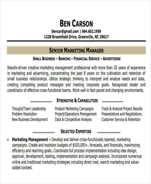 small business marketing resume