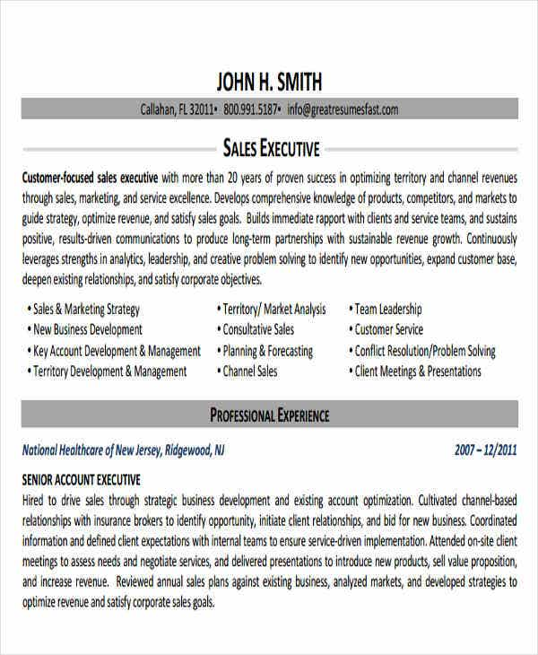 business account executive resume