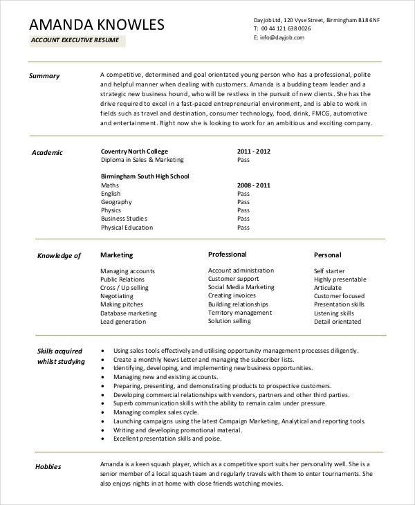 resume format for accountant executive