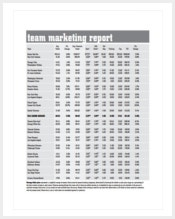 team-marketing-report-pdf-template-free-download