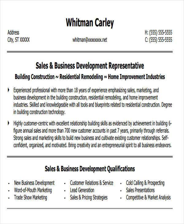 sales and business development resume2