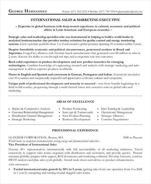 International Business Marketing Executive Resume Sample