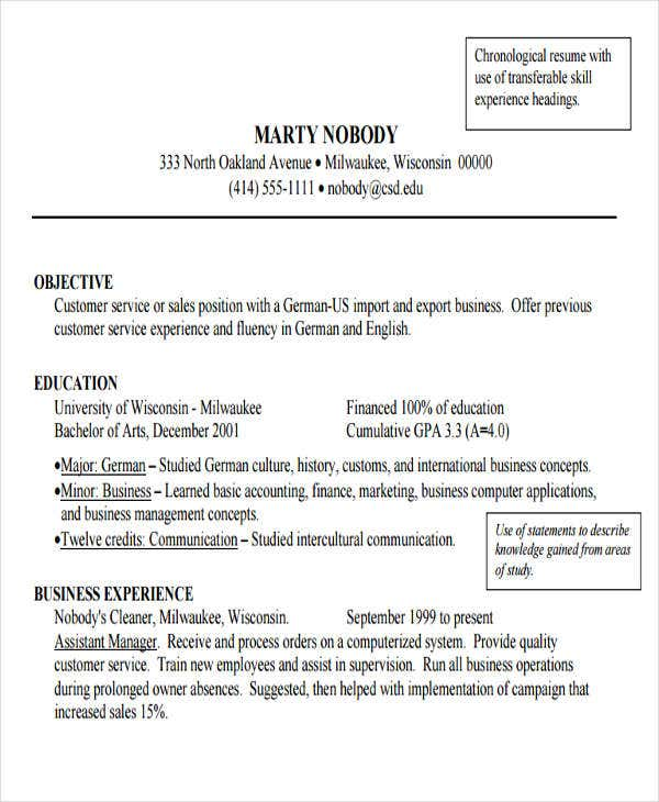 professional resume example for business