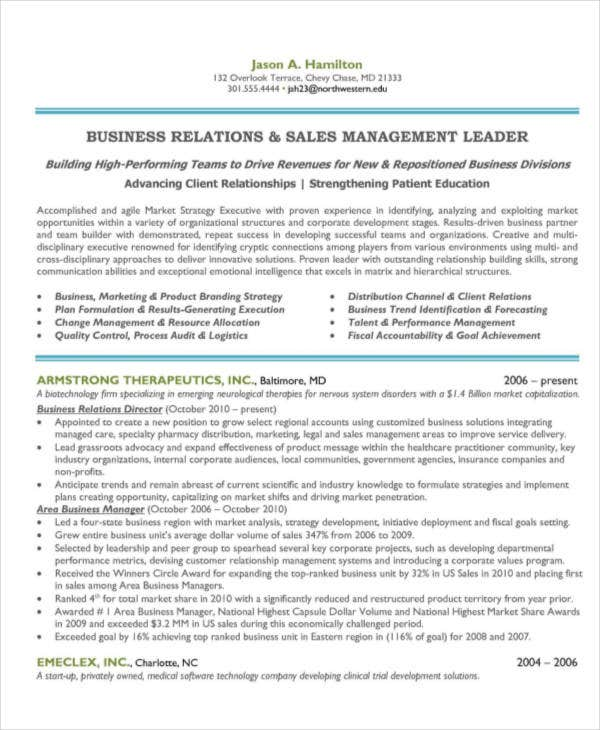 sales and marketing manager resume2
