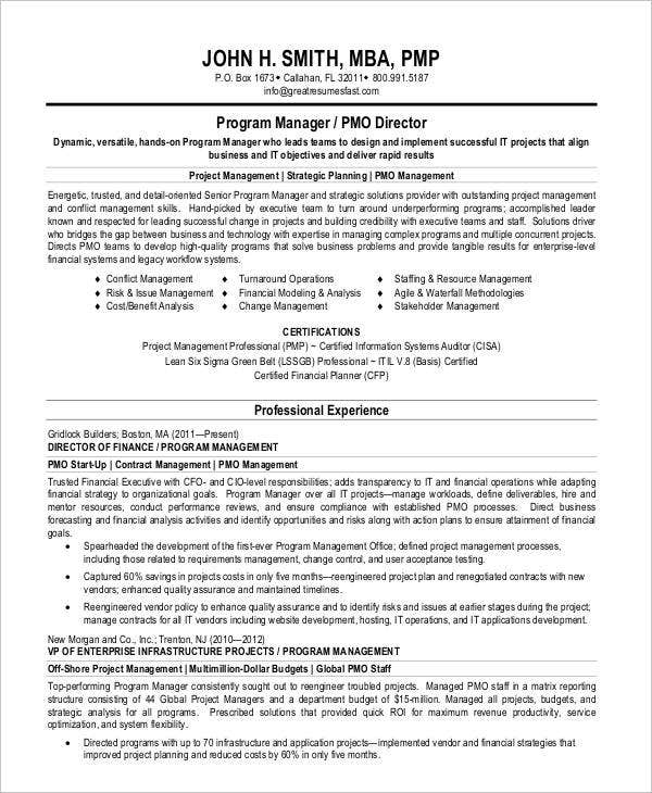 Program Manager Resume Sample