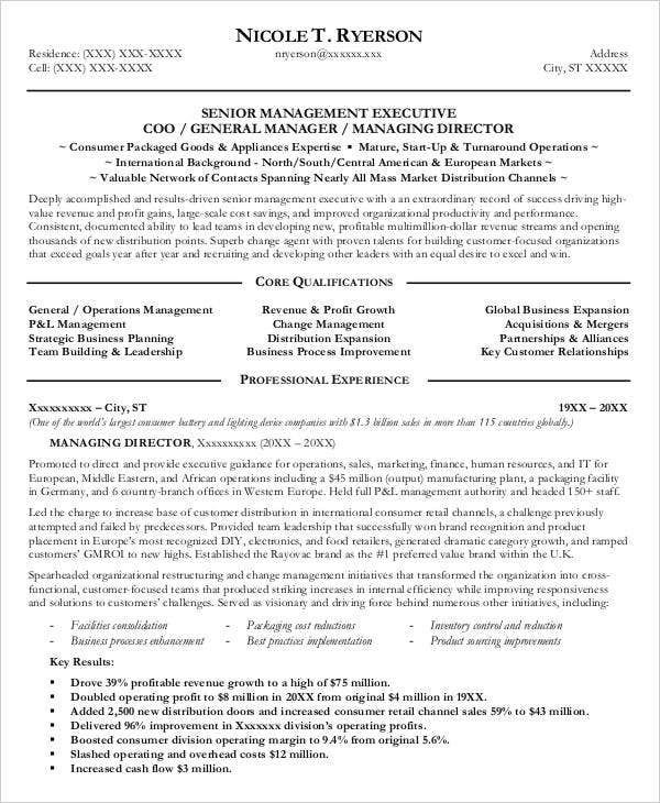 professional manager resume 49 free word pdf documents