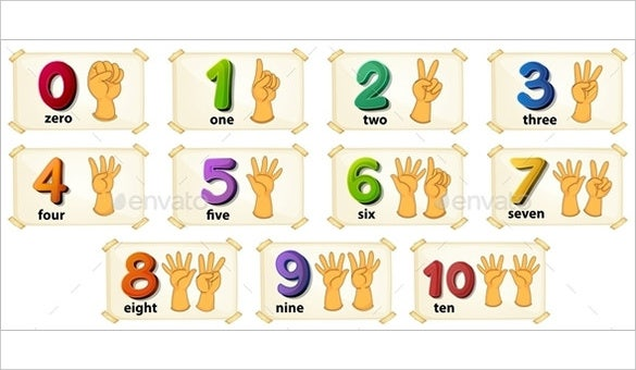 numbers flash card