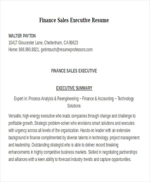 finance sales executive resume1
