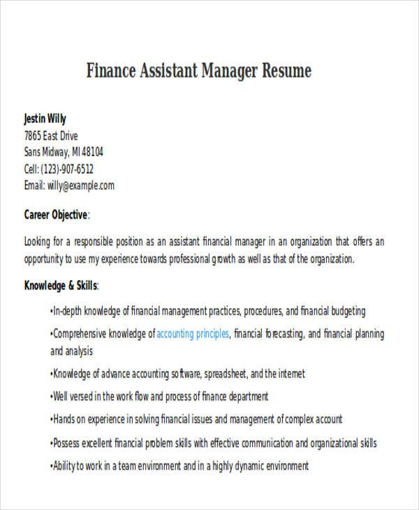 finance assistant manager resume