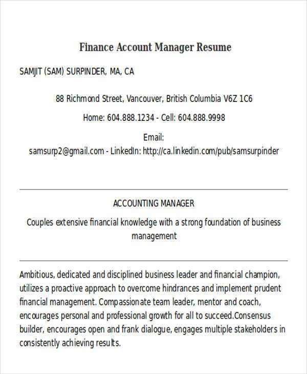 finance account manager resume