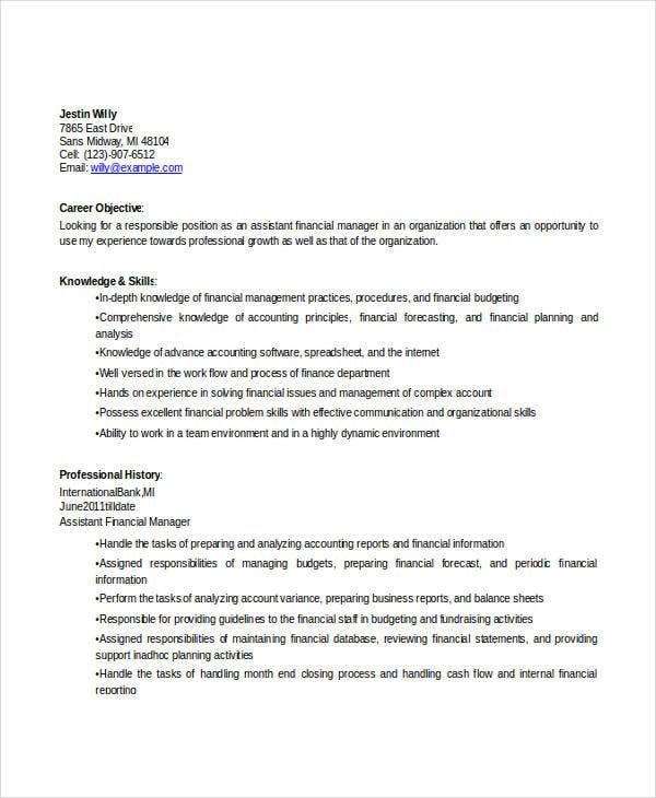 finance assistant manager resume2