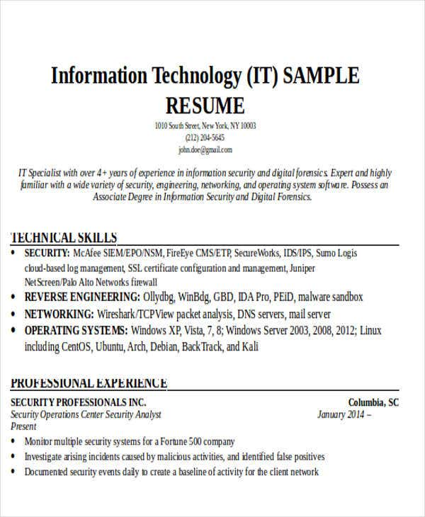 Professional IT Resume Example  It Resume Example