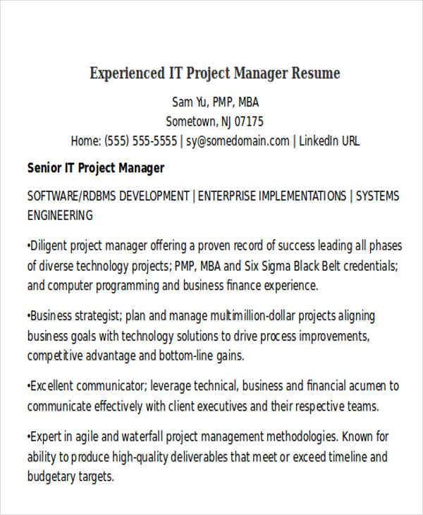 experienced it project manager resume