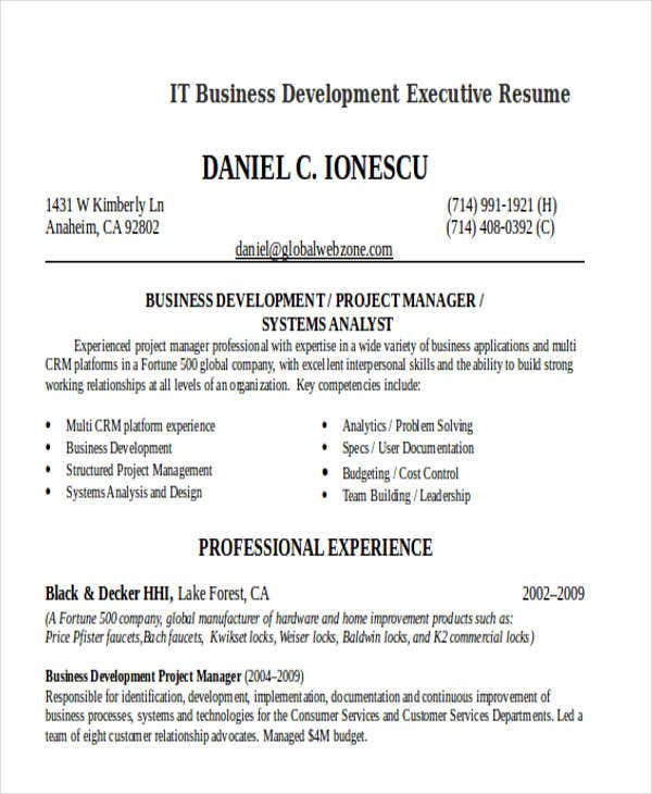 It Resume Templates  Free  Premium Templates